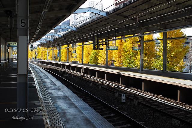 Most beautiful platform in Tokyo