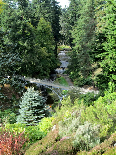 Cragside Gardens + Metal Bridge