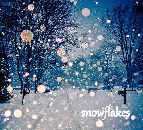 Snowstorm23_large