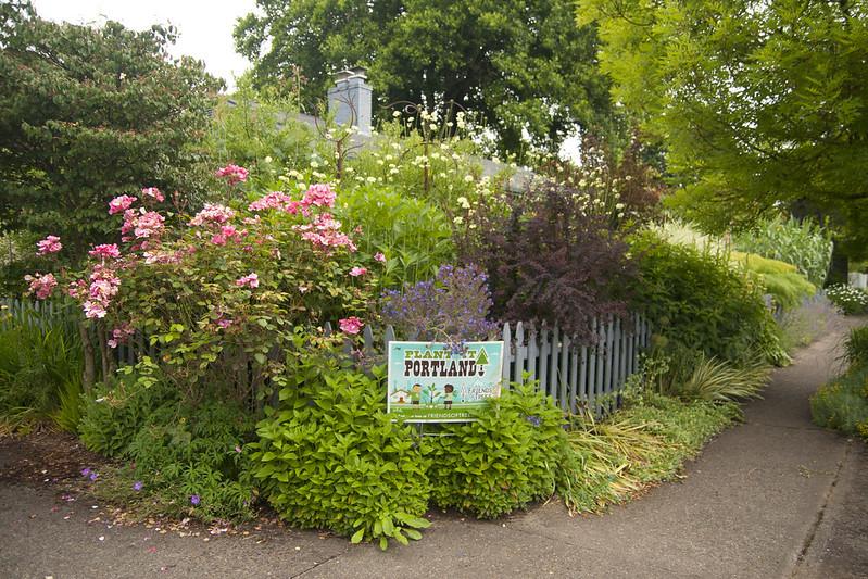 Closer Corner Garden