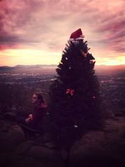 Katrina Montgomery & tree