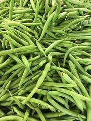 Green beans - snap beans