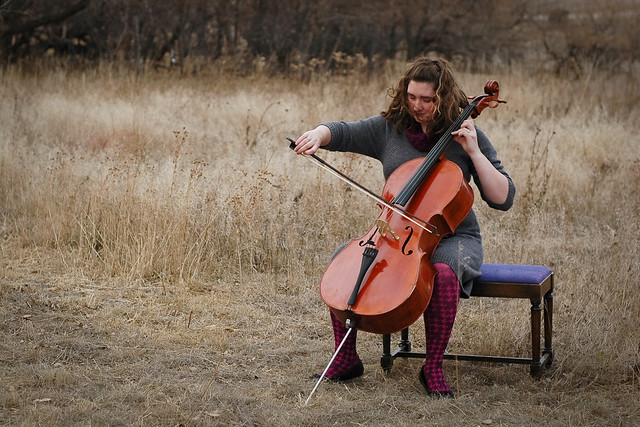 cello-1005