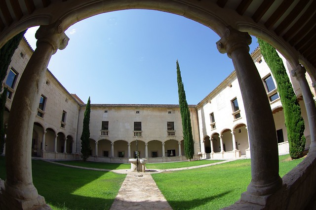 Las columnas del claustro./ The columns of the cloister.