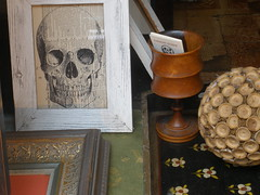Skull in Window