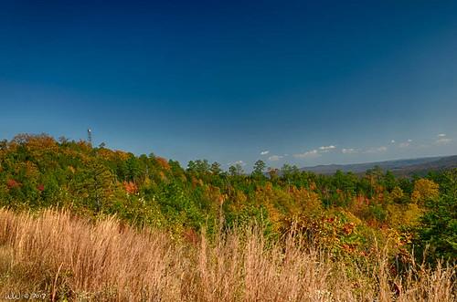 Alabama Autumn #2