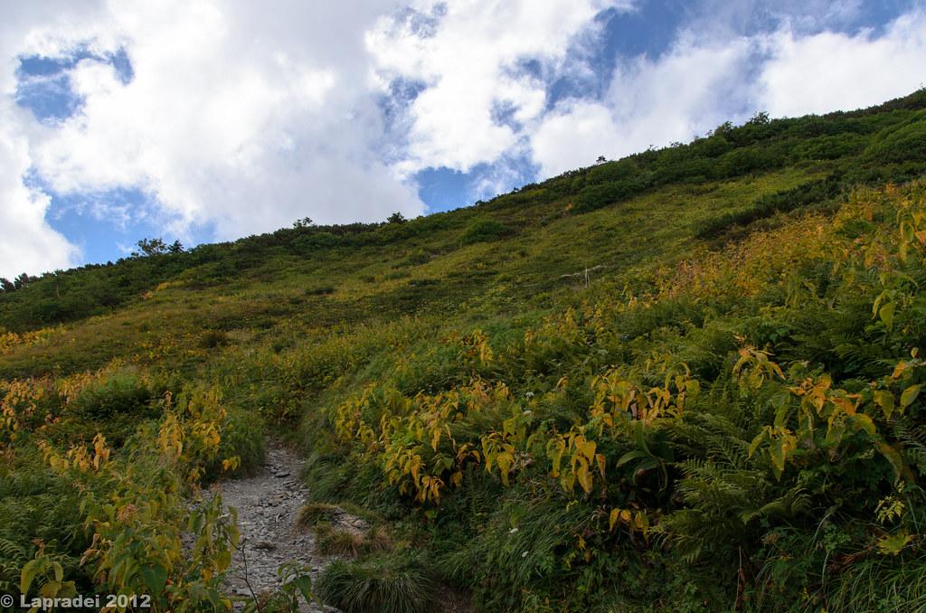 20120914 蝶ヶ岳への最後の登り