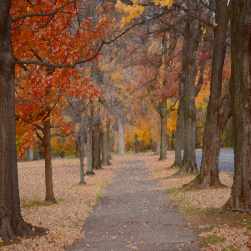 Autumn Path by paynehollow