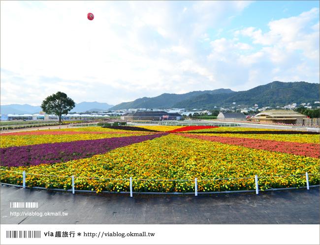 【新社花海2012】2012新社花海節活動介紹及交通資訊8-6