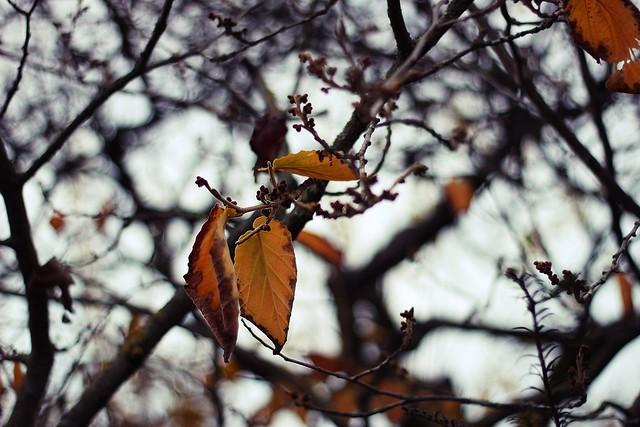 November 022