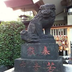 狛犬探訪 大井天祖諏訪神社 子連れでない