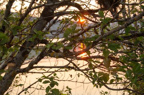 camping sunlight nature oregon sunrise unitedstates odelllake