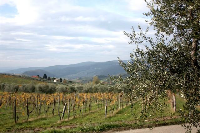 fattoria-lavacchio-smarbox-italia-24