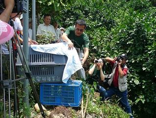 特生中心野生動物急救站與宗教團體共同辦理「生態放生」活動。(圖片來源:慈心基金會)