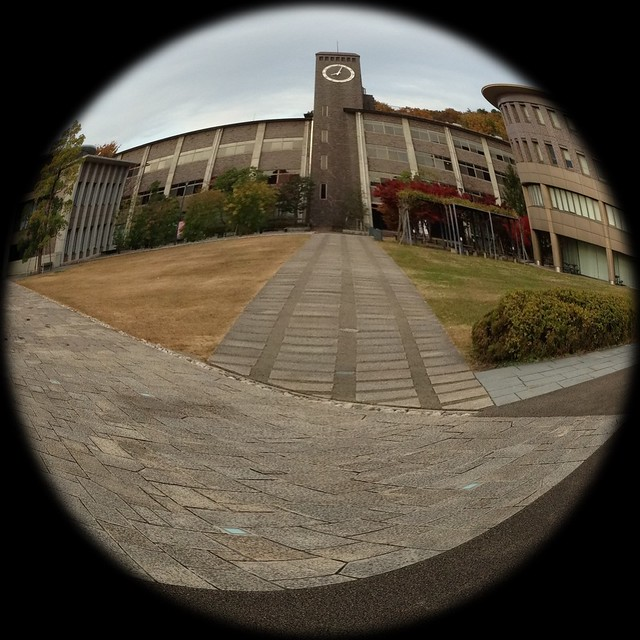 Photo 27-11-2012 13 09 18