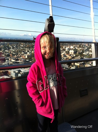 Top of the Space Needle...windy!