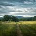 Blue Ridge Fence Line by shutterclick3x