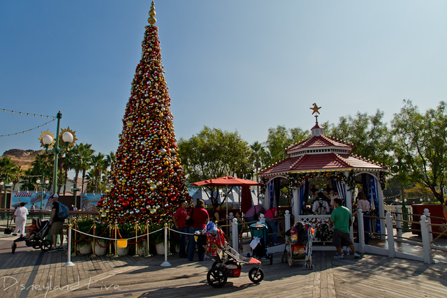 Paradise Peir Christmas Tree - 2012