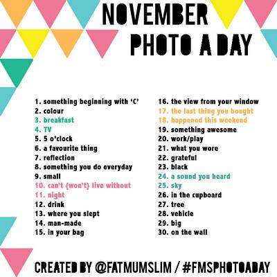 NovemberPaD.png