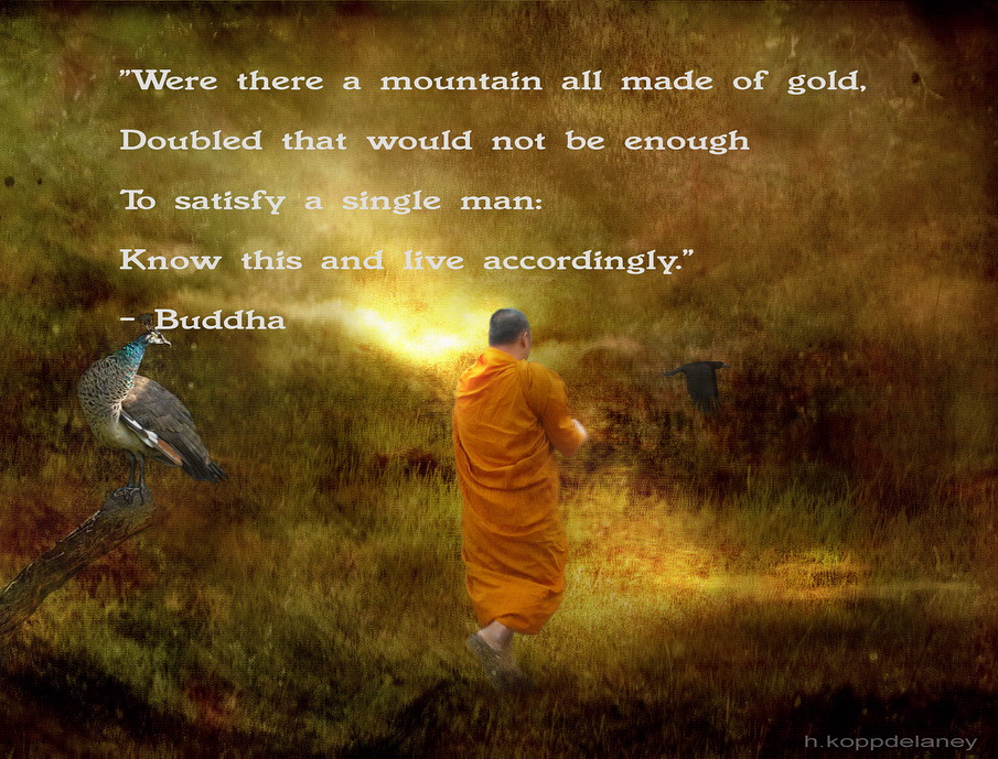 Buddha Quote 85 This Is The 85th Of 108 Buddha Quotes Flickr