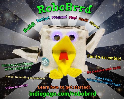 RoboBrrd!