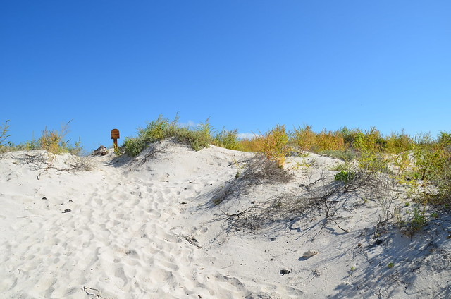 Sandy patches on the island