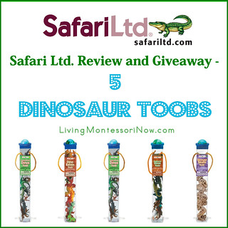 Safari Ltd. Review and Worldwide Giveaway - 5 Dinosaur TOOBS