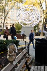 New York City Fall 2012