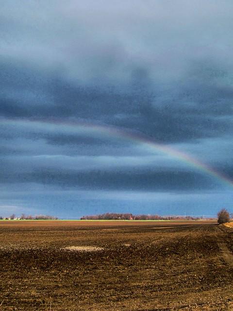 Rainbow over cornfield HDR 20121110