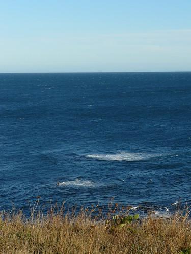 vagues et remous