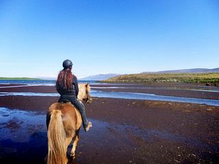 Do pony trekking on the beach - Things to do in Freeport