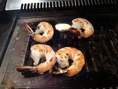 Hiroshi - shrimps2