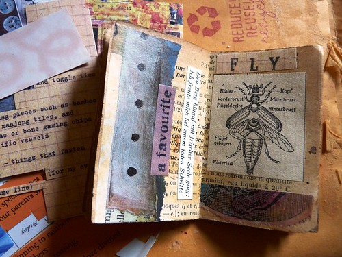 Fly (Mini Book making)