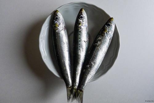soñar con peces muertos by eMecHe