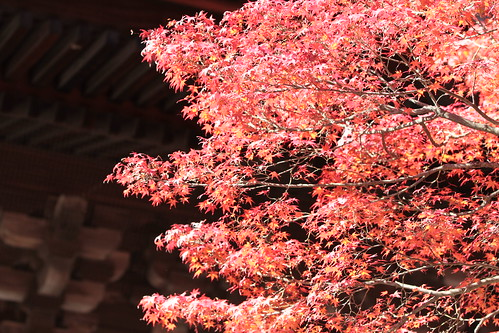 Nanzenji Temple, Kyoto