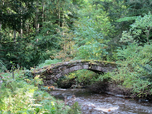 Cragside gardens 6 + old bridge