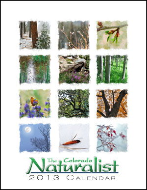 The Colorado Naturalist 2013 Desk Calendar