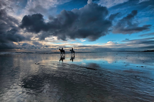horses beach clouds sunrise reflections day cloudy davidjacobs eastwittering jakeof