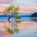 Wanaka, New Zealand by kelpie1