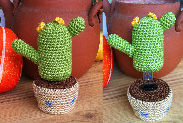 usb flash device cactus
