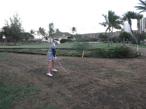 Ala Wai Golf Course 237