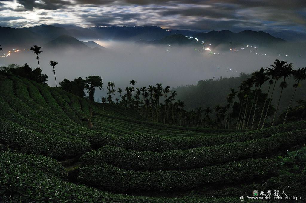 茶在山嵐處 雲中飄渺香