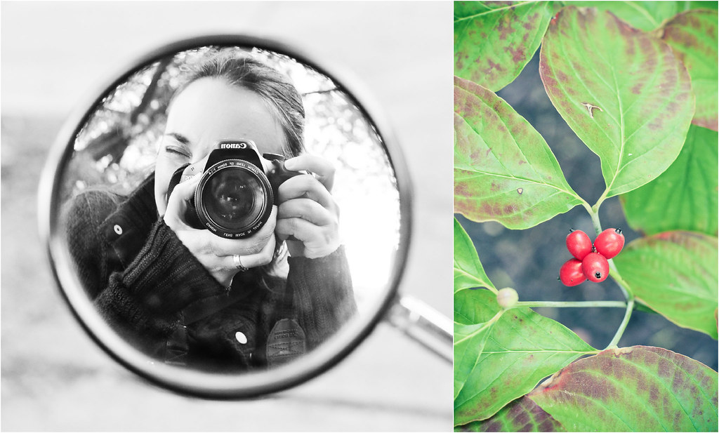 Collage_otoño