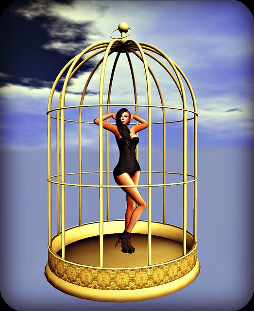 I'm like a bird - stand