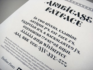 License voucher for Ambicase Fatface fonts