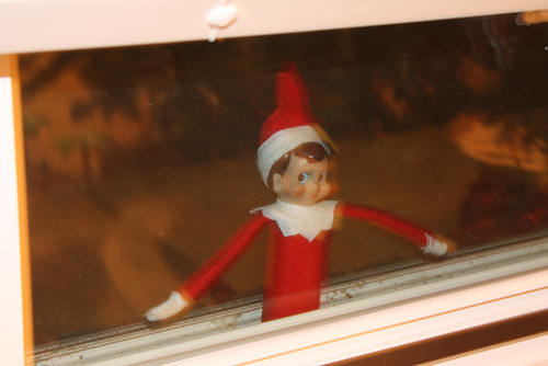 Elfie-Stuck-Outside