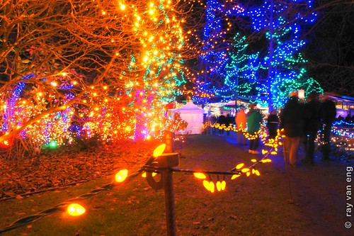 Vancouver's VanDusen Gardens Festival of Lights 2012 Christmas Celebration Connects People to the Natural Environment for the Holiday Season