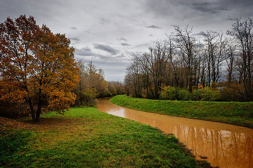 autumn trees sky cloud tree green 20d grass leaves yellow horizontal creek canon eos rising hungary cloudy brook muddy embankment lanscape zala