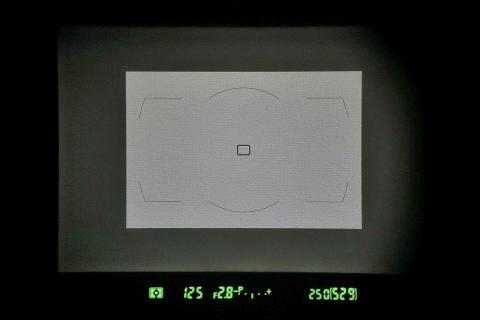 D800Eのファインダ。DXの領域は小さい