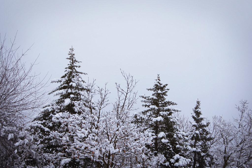 winteradventure6